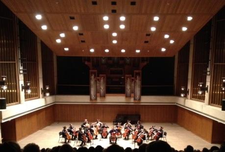Longhorn Cellos